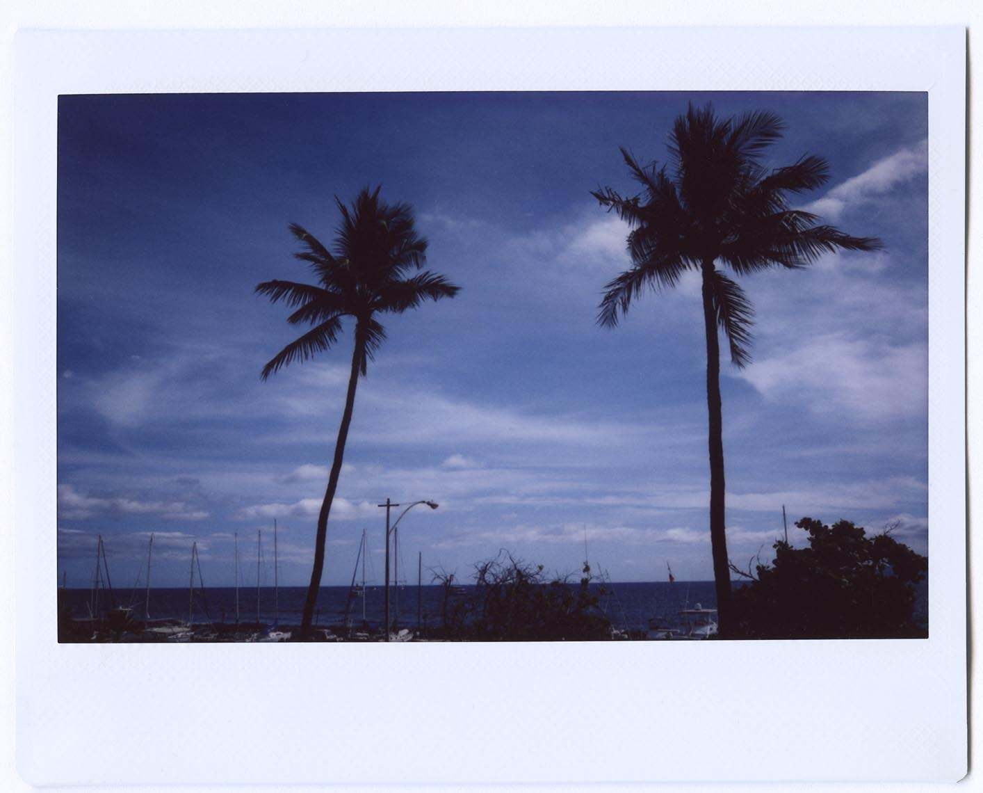Hawaii_FILM_2015_07